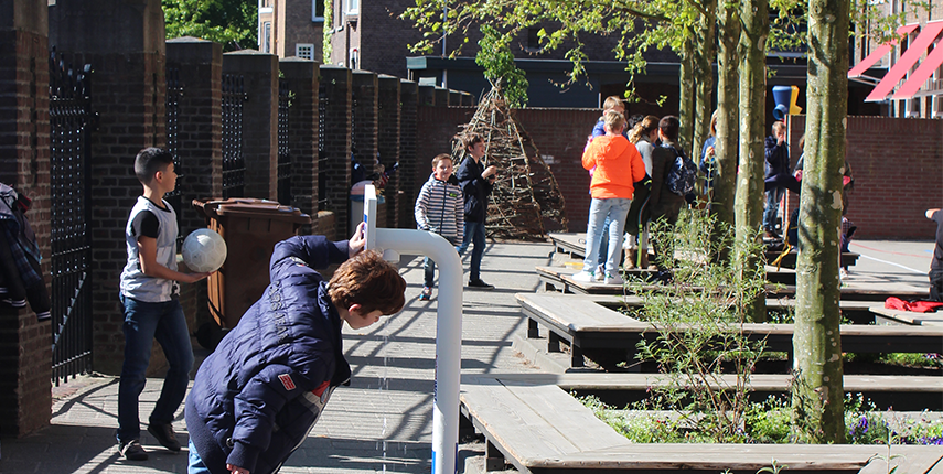 Groenere Schoolpleinen in Breda