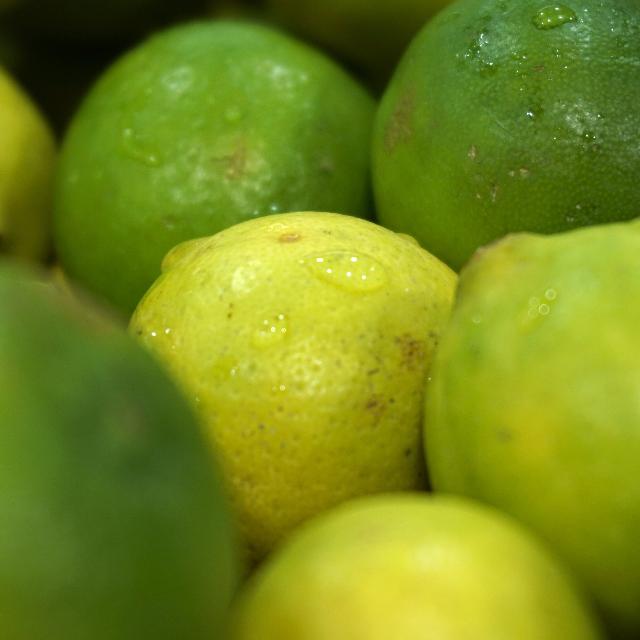 avondvierdaagse fruit